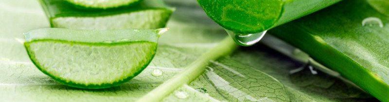 Aloe Vera prirodni sok